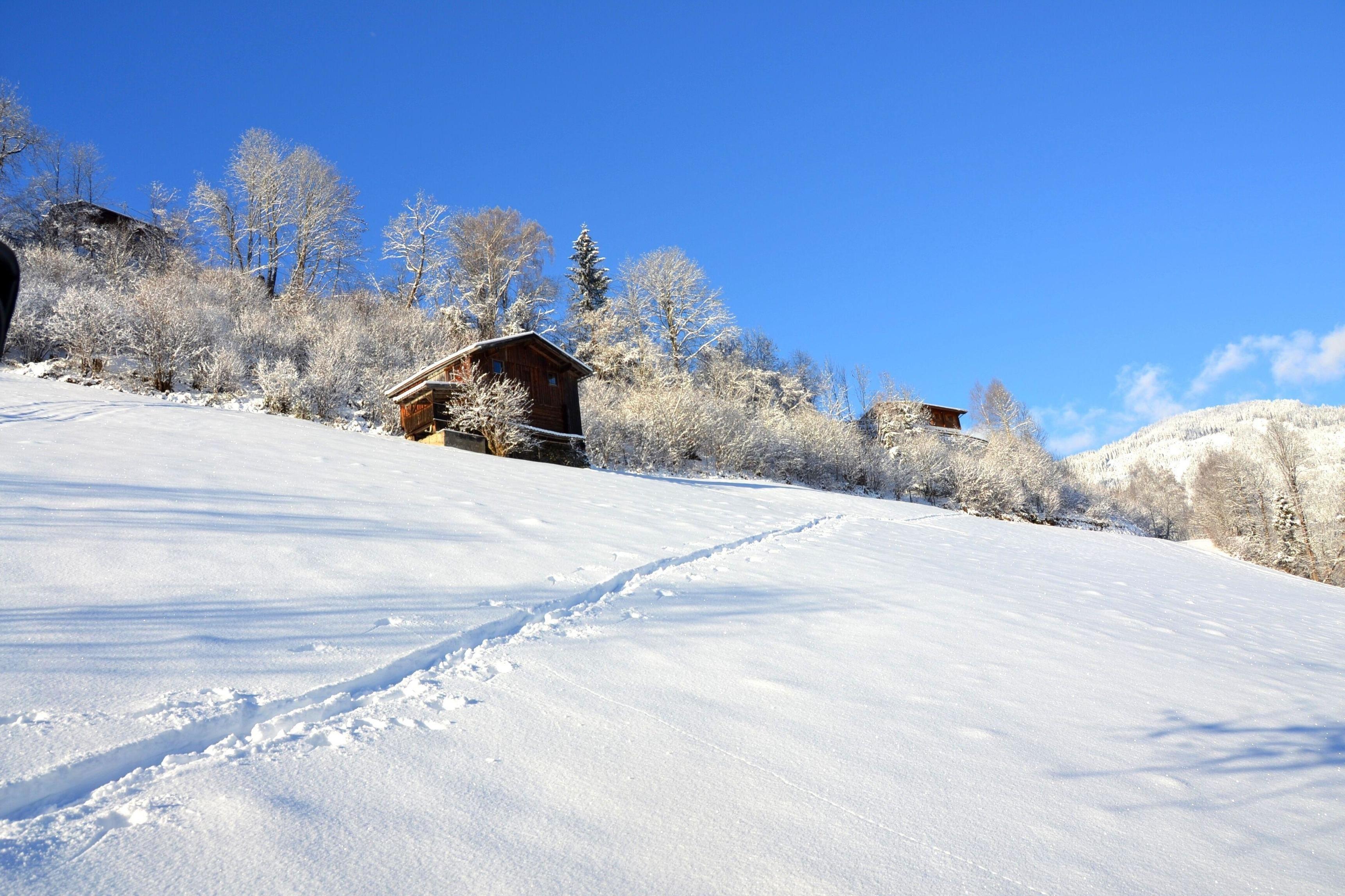 Holiday house Waldhütte Wachterhof (1859319), Kaltenbach, Zillertal, Tyrol, Austria, picture 23