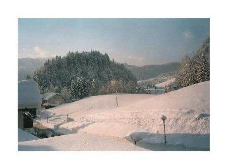 Ferienwohnung Sport Alpin Wohnung 9 (2018961), Oberstdorf, Allgäu (Bayern), Bayern, Deutschland, Bild 5