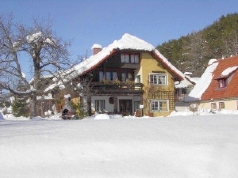 Holiday apartment Landhaus EGGER (2052852), Seeboden, Lake Millstatt, Carinthia, Austria, picture 4