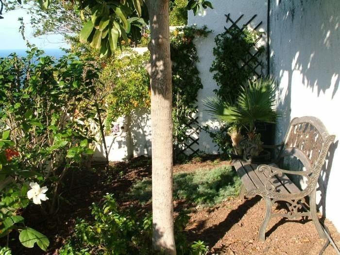 Appartement de vacances Apartment mit Meerblick - F0105 (2240139), El Sauzal, Ténérife, Iles Canaries, Espagne, image 16