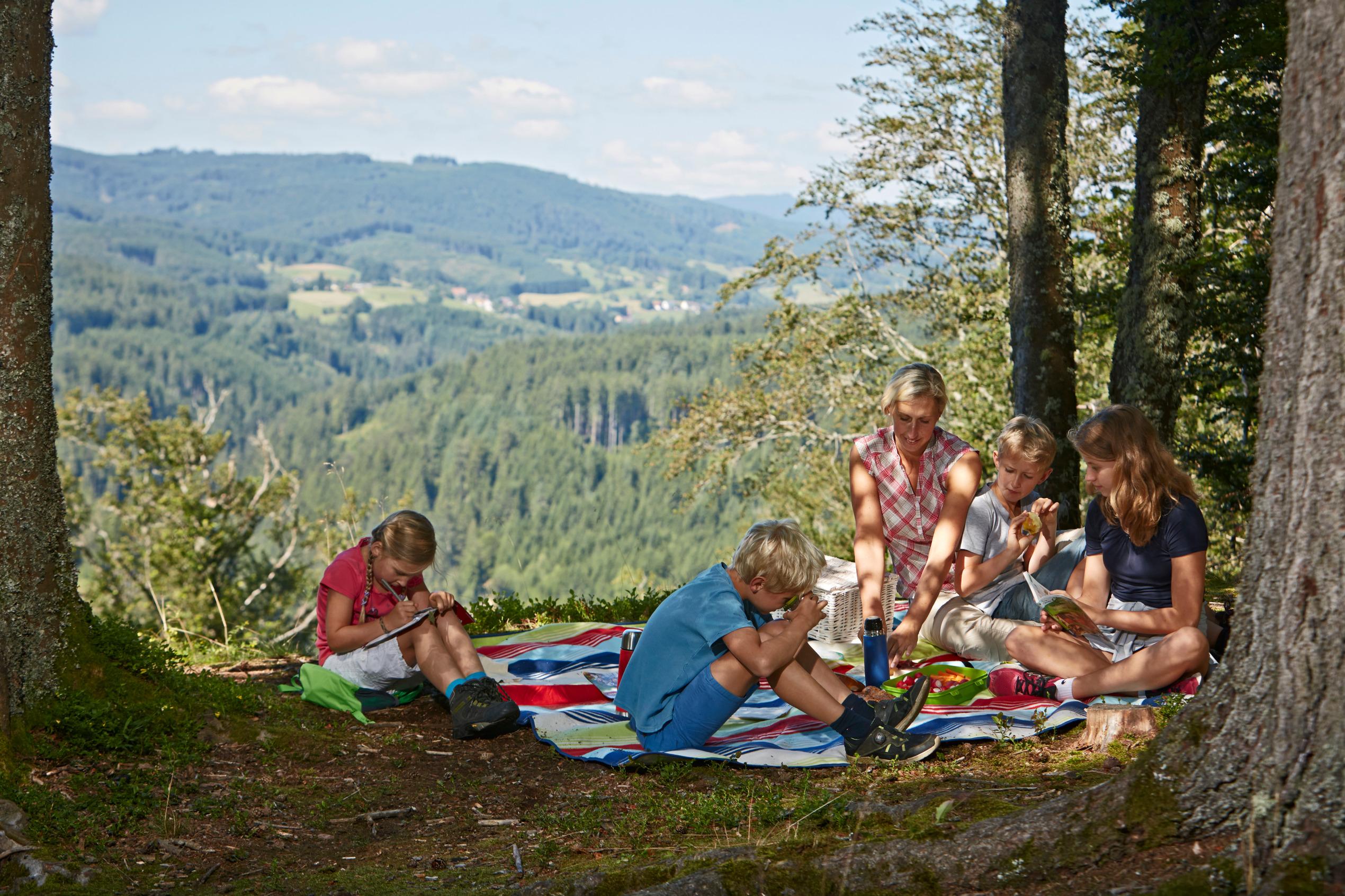 Ferienwohnung Luxus Ferienwohnung Bergblick 01 im Haus Lufeto - Todtnau, Feldberg (2641641), Todtnau, Schwarzwald, Baden-Württemberg, Deutschland, Bild 19