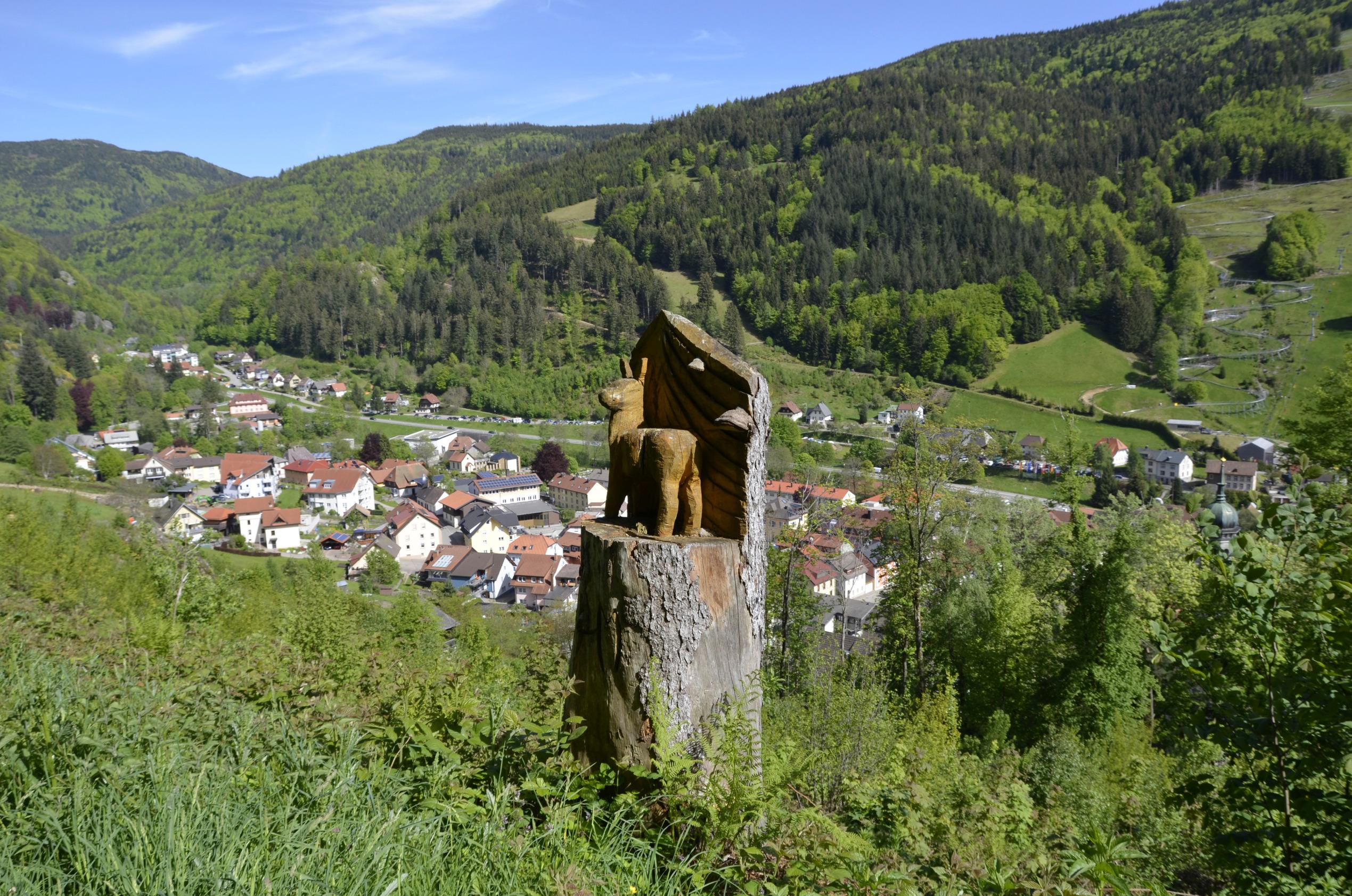 Ferienwohnung Fewo Waldblick- hübsche neu renovierte Fewo- Schwarzwald - Todtnau, Liftverbund Feldberg (2641721), Herrenschwand, Schwarzwald, Baden-Württemberg, Deutschland, Bild 16