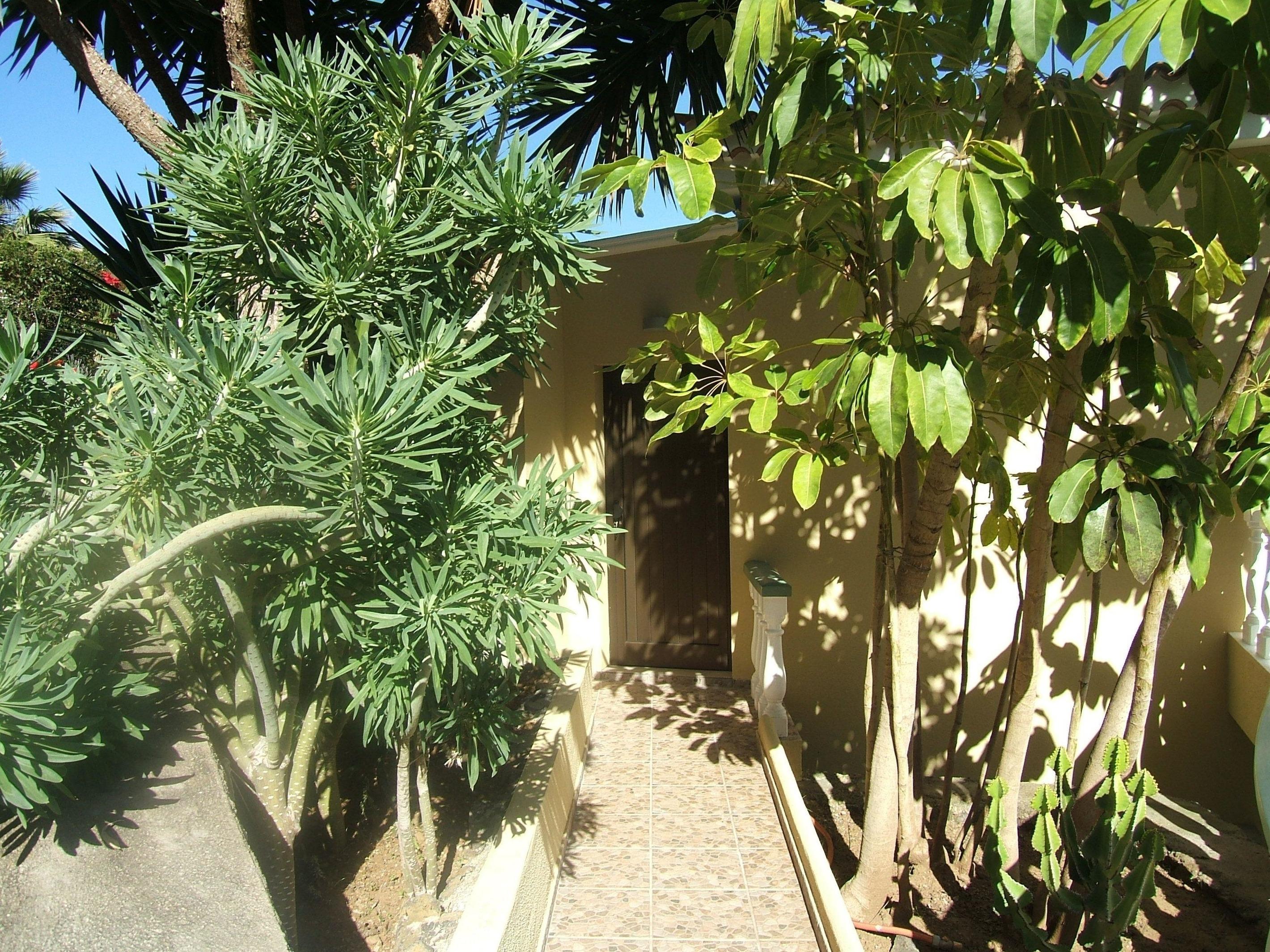 Appartement de vacances Fewo Vistamar mit Meerblick, Pool, grosser Terrasse und Garten, Grill, Parkplatz und WLAN  (2492978), Santa Ursula, Ténérife, Iles Canaries, Espagne, image 11