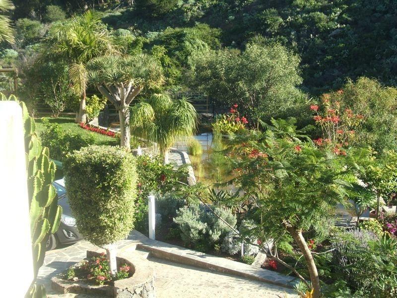 Appartement de vacances Fewo Strelitzia, im Grünen, am kleinen See, direkt am Strelitziengarten, mit Pool, Grill,  (2492987), Santa Ursula, Ténérife, Iles Canaries, Espagne, image 20