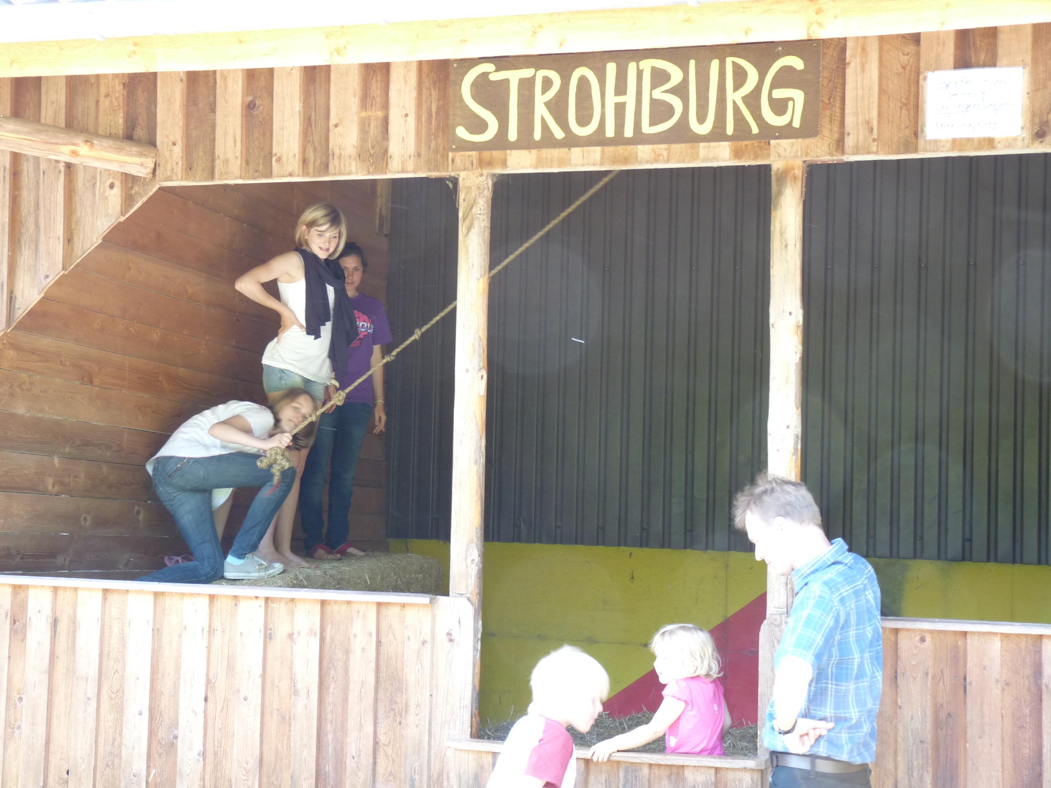 Ferienwohnung Nordmann, Haus am Wald (2655542), Lutzhorn, Schleswig-Holstein Binnenland, Schleswig-Holstein, Deutschland, Bild 22