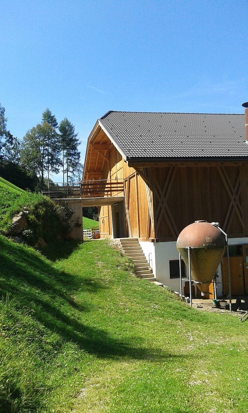 Ferienwohnung Oberplunerhof Chaletapartment Gitschberg (2701876), Kiens (Chienes), Pustertal, Trentino-Südtirol, Italien, Bild 20
