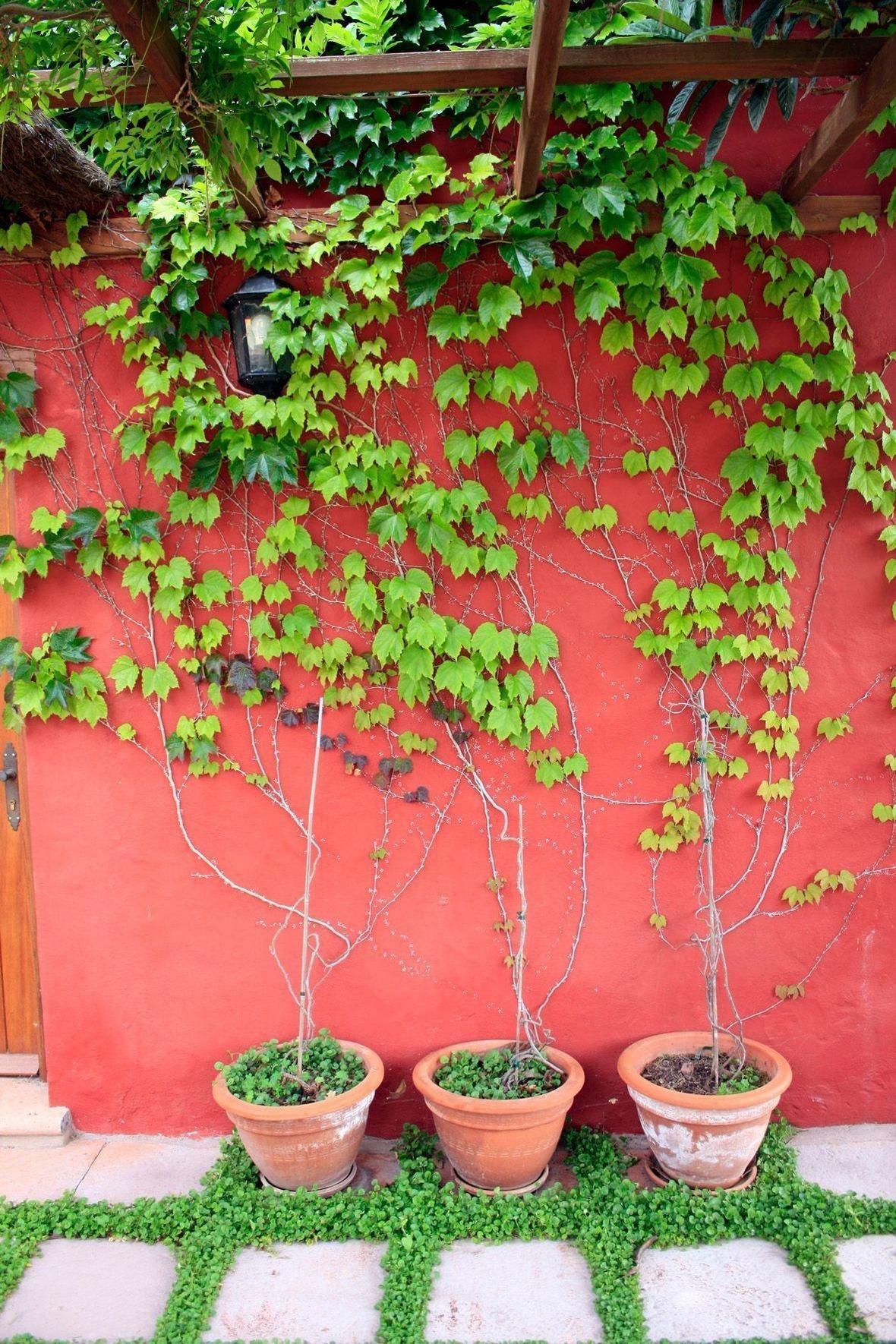 Maison de vacances CASA COMPLETA CON PISCINA PRIVADA EL ROBLE (2722481), San Fernando, Grande Canarie, Iles Canaries, Espagne, image 7