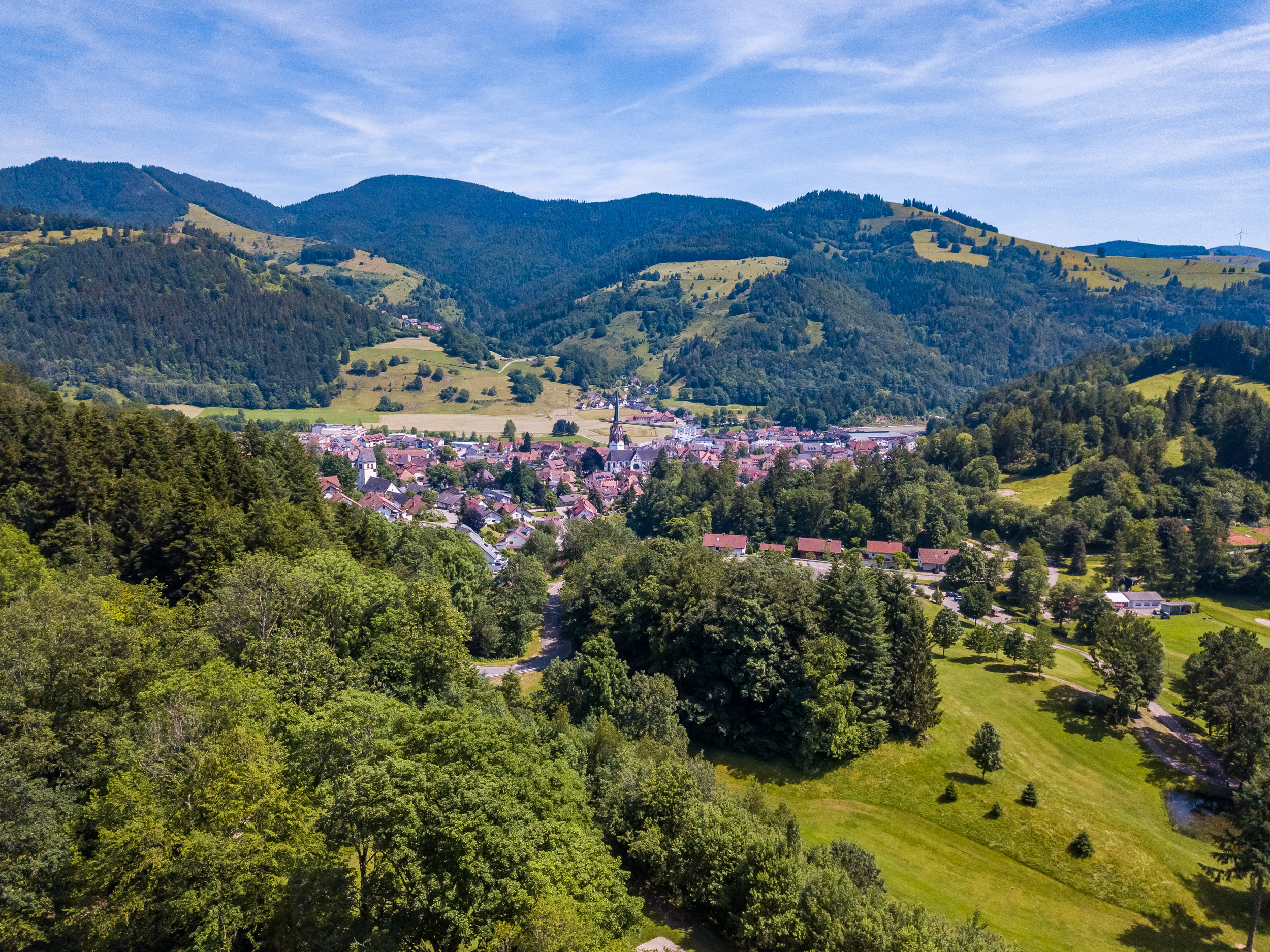 Ferienwohnung Belchenliebe (2792764), Schönenberg, Schwarzwald, Baden-Württemberg, Deutschland, Bild 16