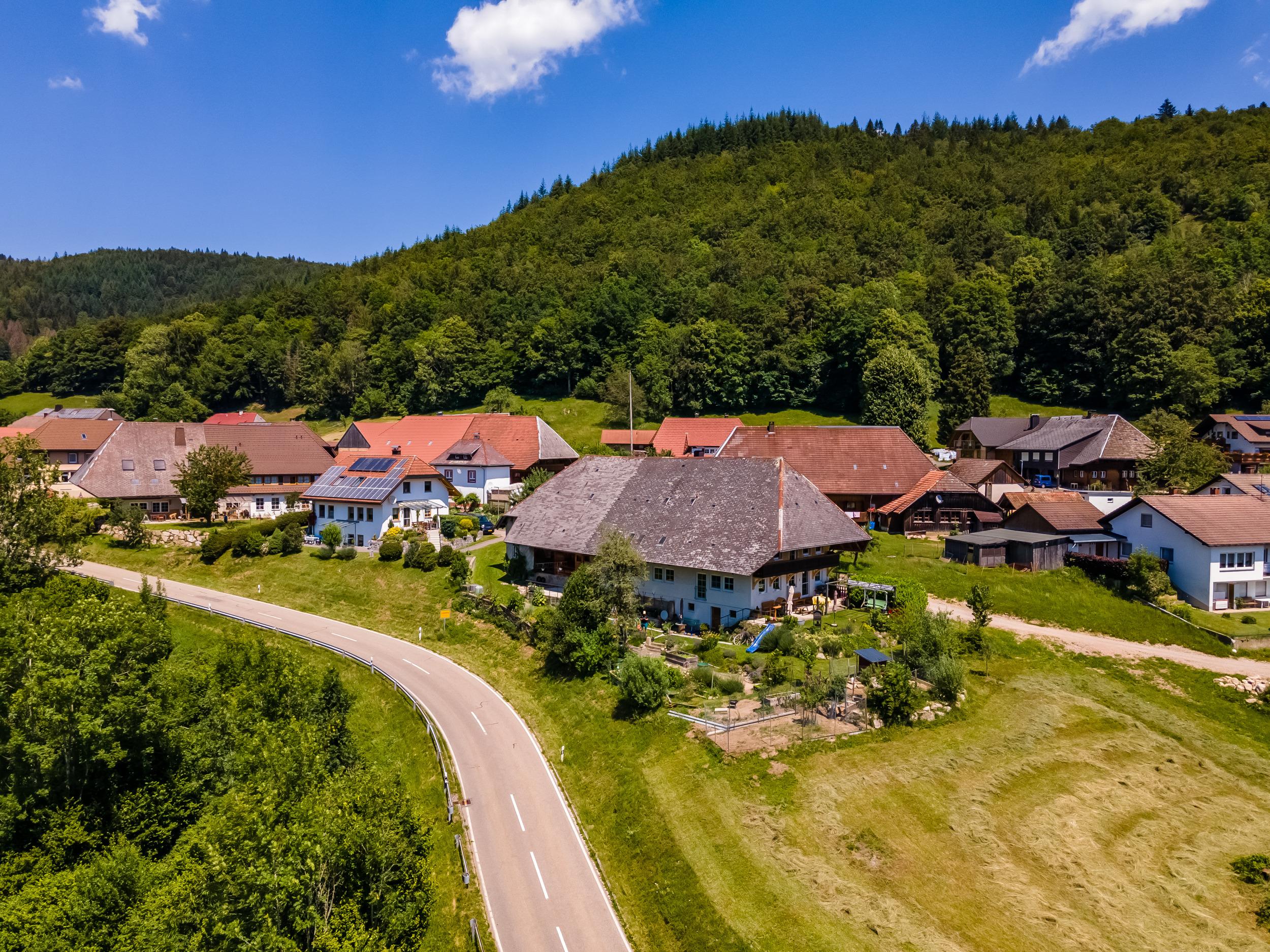Ferienwohnung Belchenliebe (2792764), Schönenberg, Schwarzwald, Baden-Württemberg, Deutschland, Bild 23