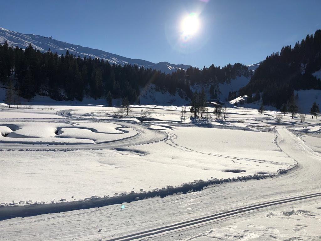Ferienwohnung Hoch Ybrig (2798110), Oberiberg, Schwyz, Zentralschweiz, Schweiz, Bild 22