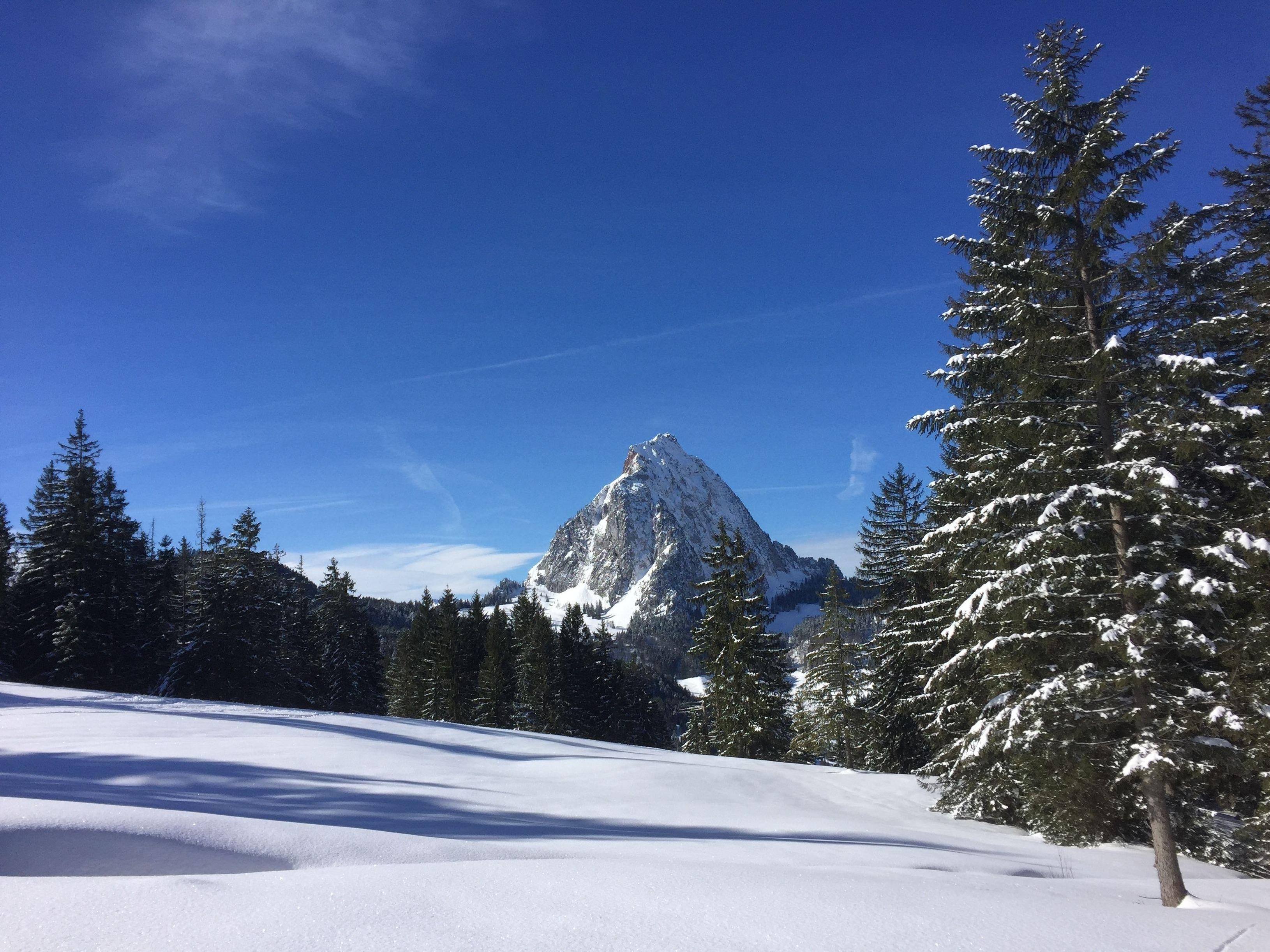 Ferienwohnung Hoch Ybrig (2798110), Oberiberg, Schwyz, Zentralschweiz, Schweiz, Bild 24